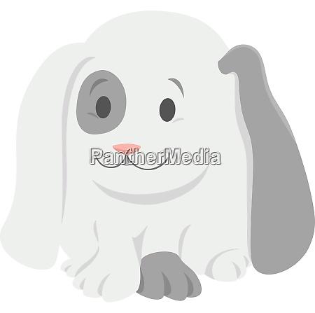 baby rabbit cartoon animal character