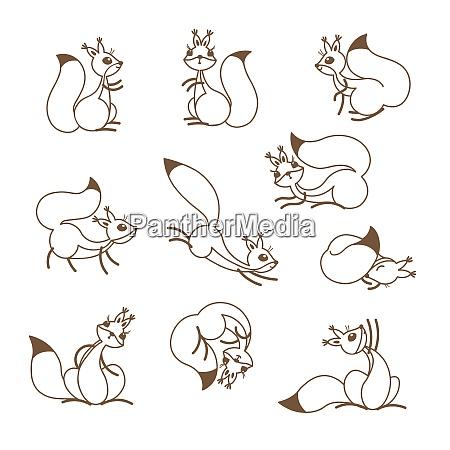 cartoon cute squirrel little funny squirrels
