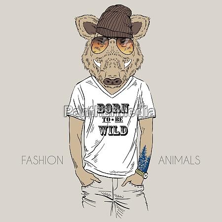 illustration of wild boar dressed up