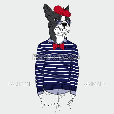 illustration of dressed up french bulldog