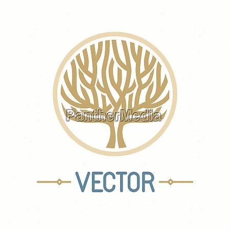 vector abstract emblem outline monogram