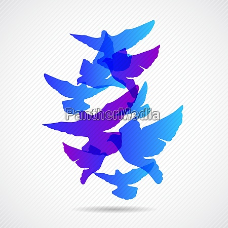 vector pigeons background design collorfull eps