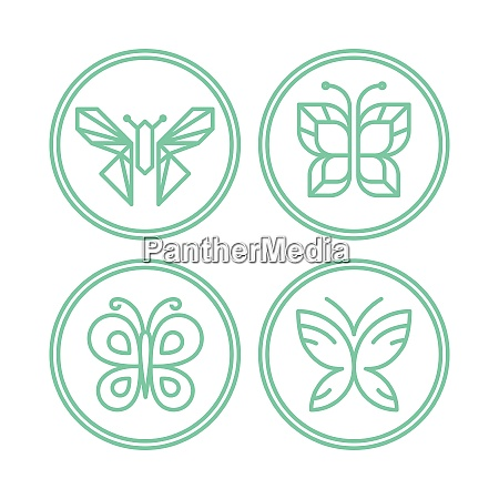vector set of line butterfly logos