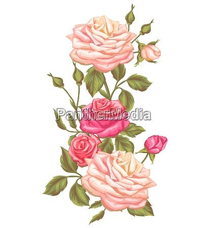 floral element with vintage roses decorative