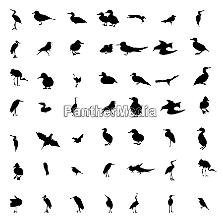 set of black and white silhouettes