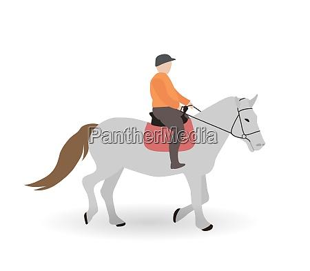 rider on gray horse vector illustration