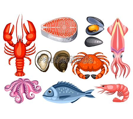 various seafood set illustration of fish