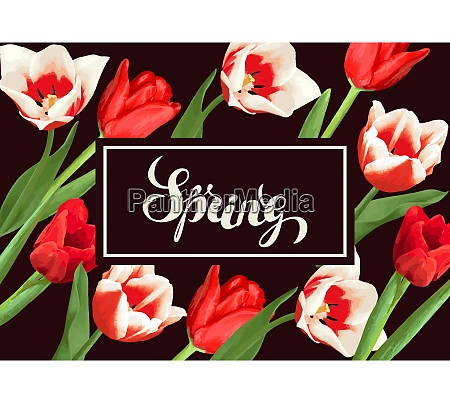 spring background with red and white