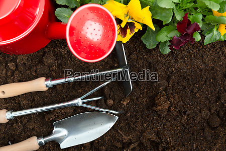 gardening tools on soil background planting