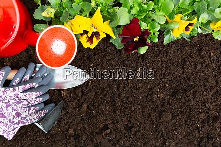gardening tools on soil background planting