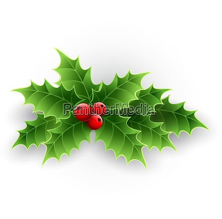 christmas holly berry christmas holly
