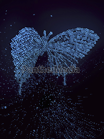 three dimensional qubit butterfly