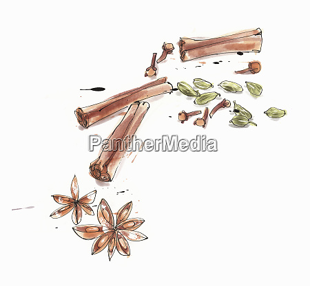 watercolour painting of different spices
