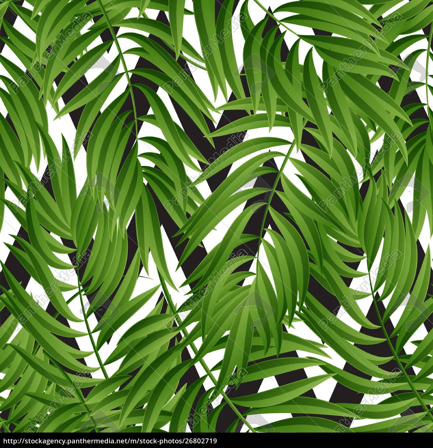 Tropical Palm Leaves Vector Seamless Tropical Palm Stock Photo 26802719 Panthermedia Stock Agency Are you looking for the best tropical leaves clipart for your personal blogs, projects or designs, then clipartmag is the place just for you. royalty free vector 26802719 tropical palm leaves vector