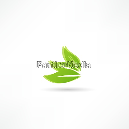 environmental leaves icon