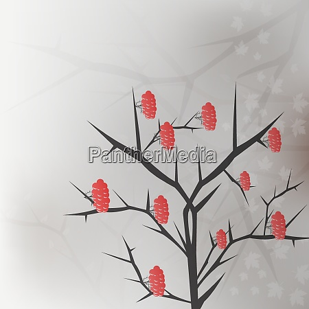 viburnum twig with red berryes bunches