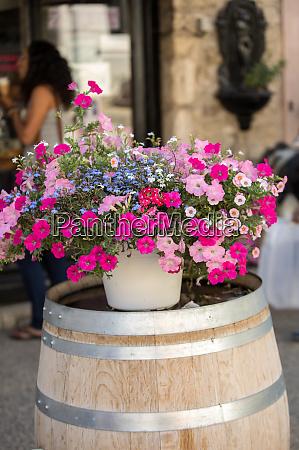 a floristic arrangement of red petunia