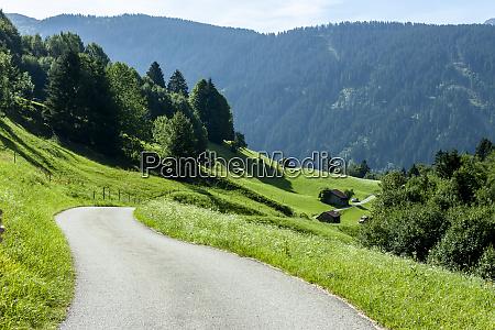 path among green field summer day