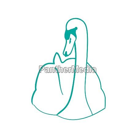 illustration sketch of hand drawn swan