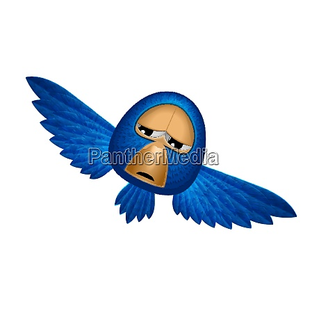 angry beholder blue bird soars and