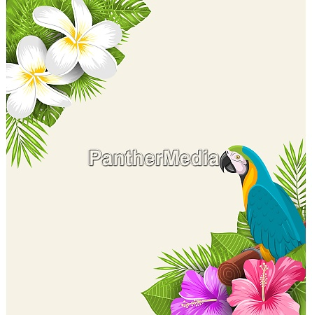 exotic border with parrot ara flowers