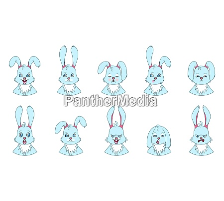 heads of rabbit with different emotions