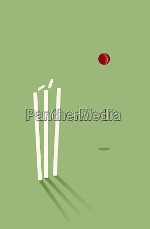 cricket ball knocking bails off stump