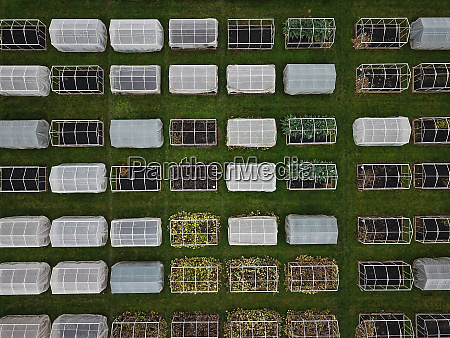 aerial view of multiple greenhouses