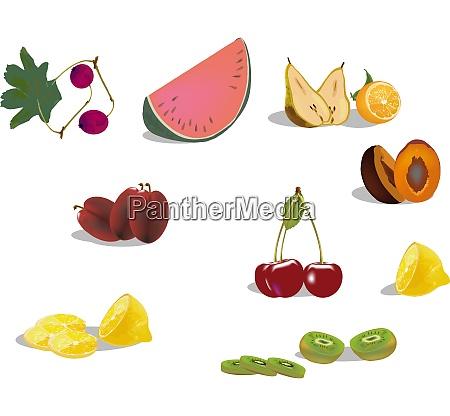 seasonal fruit series
