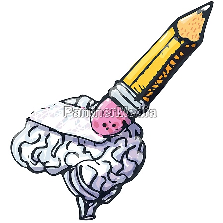 pencil wipes out a brain memory