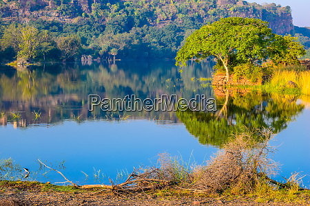 inside view of ranthambore national park