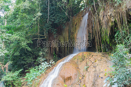 nam tok phu sang forest park