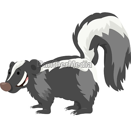 funny skunk animal cartoon illustration