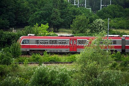 red train vehicle in greenery