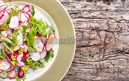 salad of radish and green
