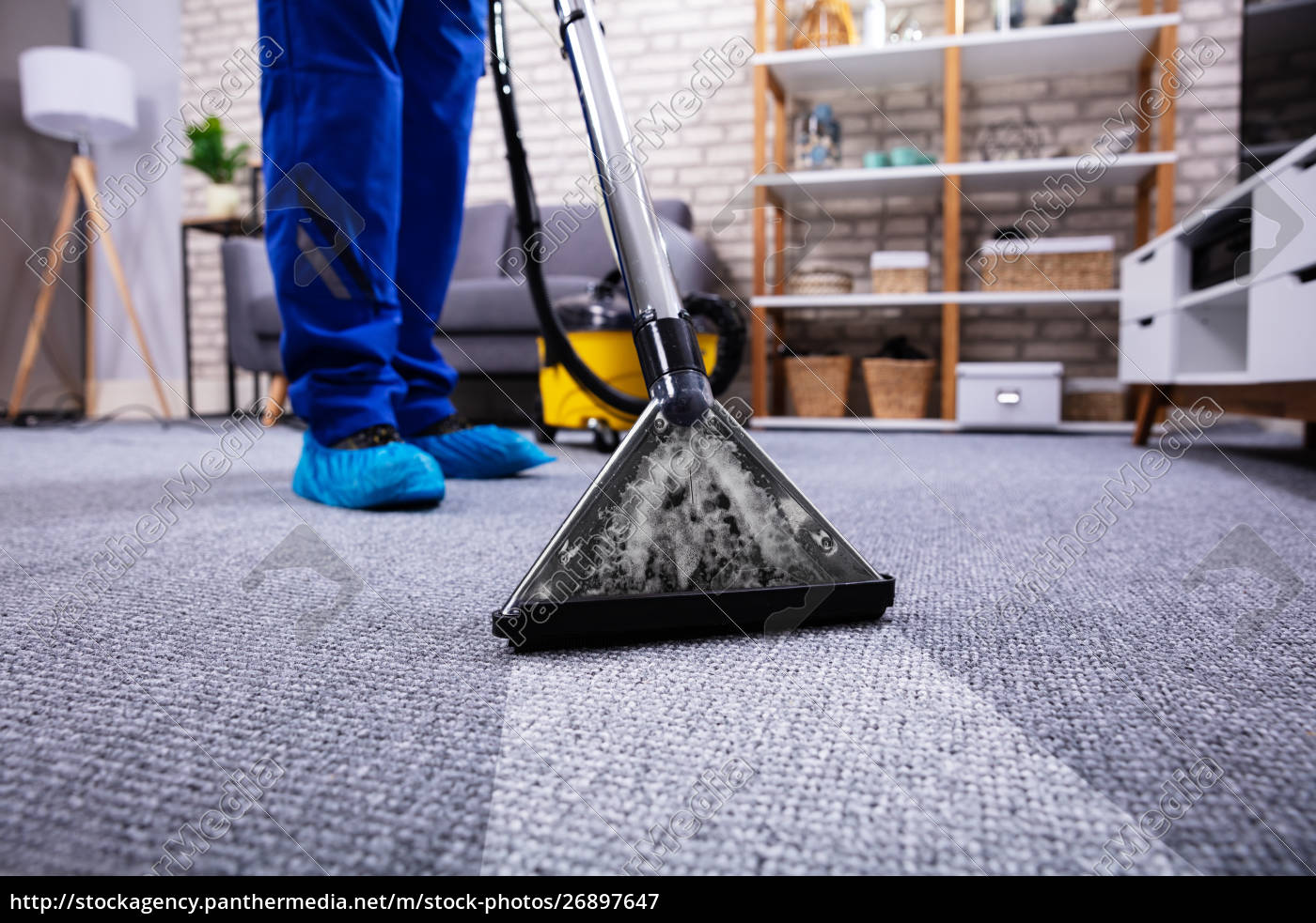 person, cleaning, carpet, with, vacuum, cleaner - 26897647