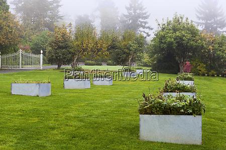 raised beds in landscaped garden