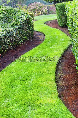 winding grass path in landscaped garden