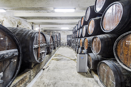 barrels of wine aging in wine