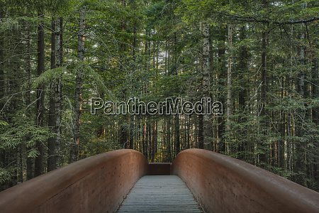 footbridge in redwood national park california