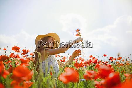 girl picking red poppy flowers in