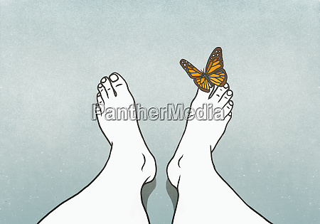 butterfly landing on mans toe