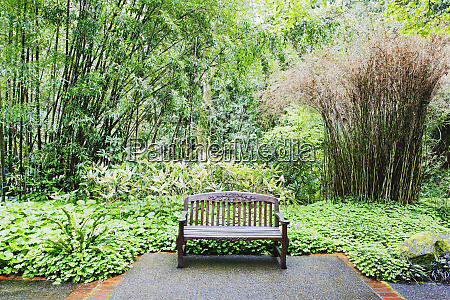 bench in lush park portland oregon