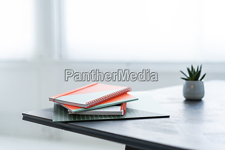 stack of notebooks and potted plant