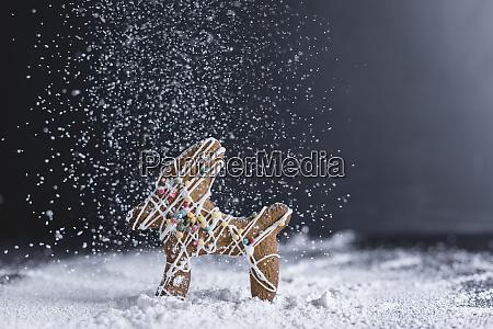 christmas pastry gingerbread reindeer icing sugar