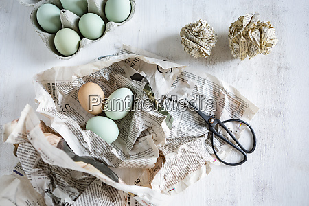 still life with eggs newspaper scissors