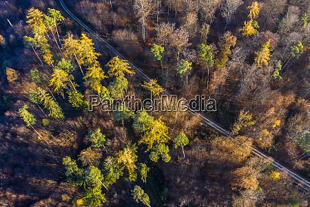 germany baden wuerttemberg swabian forest nassach