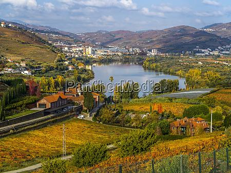 autumn coloured foliage surrounding douro river