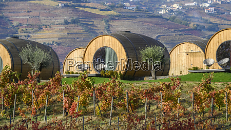 large wine barrel structures for accommodation