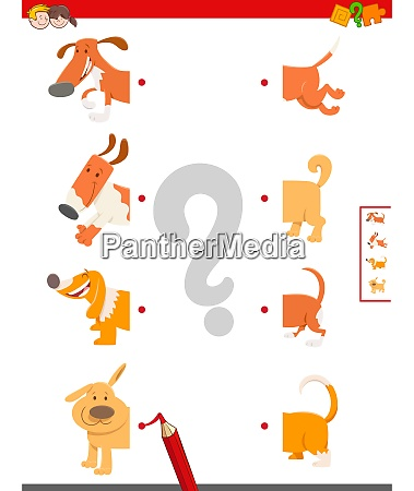 match halves of cute dogs educational